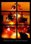 A Romantics Christmas – PhotographicPoetry