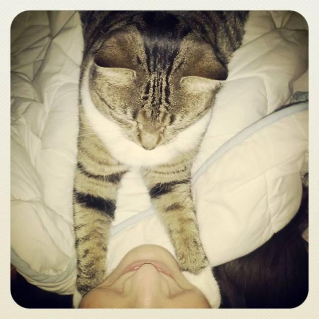 cuddletahli